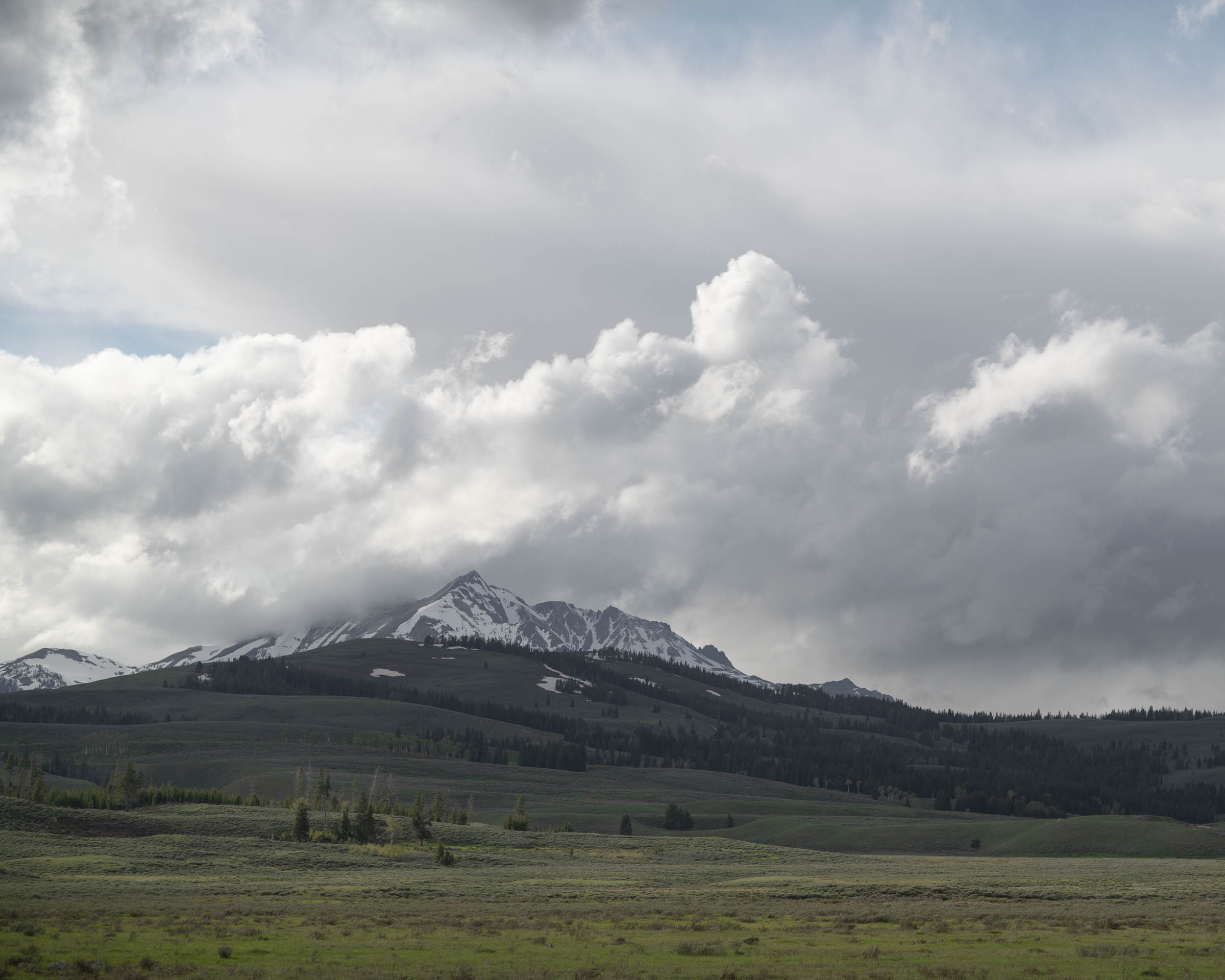 YellowstoneRoadside-3